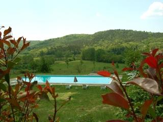 Villa Cini - Old Tuscan villa with 13 sleeps, Bucine