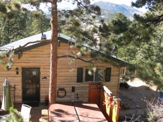 Mountains and Pine Cone Cabin