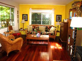 Hale I'iwi- Stay in 2 bed/2 bath Artist's Home! - Puna District vacation rentals