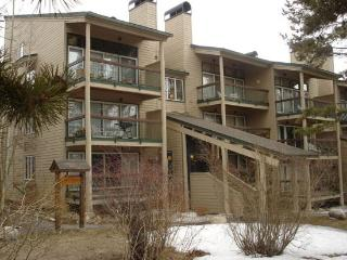 Super 2 BR/2 BA House in Keystone (2148 The Pines)