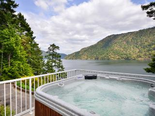 Amazing Large Victoria Ocean Front 4 Bedroom Home with Hot Tub and Dock