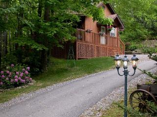 HONEYMOON CABIN- WIFI-HOT TUB,CREEK $ 675.00 week, Maggie Valley
