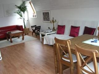 Vacation Apartment in Essen - 592 sqft, beautiful location, convenient, comfortable (# 2122) - Gelsenkirchen vacation rentals