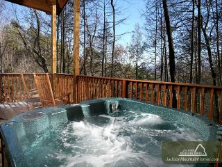 Great Expectations  Pets Pool Table 2 Hot Tubs Pool Access Free Nights, Gatlinburg