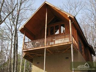 Bear Country Cabin   Private Wooded Gaming Hot Tub WiFi    Free Nights, Gatlinburg