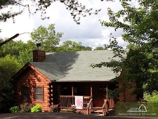 Three Bears Cabin   Views Gaming Hot Tub Jetted Tub WiFi   Free Nights, Gatlinburg