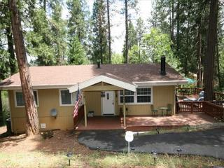 Secluded home in the pines- large deck, fireplace, a/c, w/d, TV/DVD, Groveland