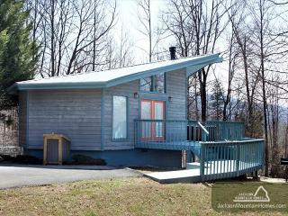 Woodsong   Cozy Privacy Hot Tub Fireplace Pets Grill WiFi  Free Nights, Gatlinburg