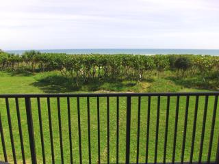 Direct Oceanfront - Newly Renovated - Must See!, Cape Canaveral