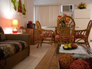II GOOD LOCATION , NICE, CLEAN AND COMFORTABLE., La Paz