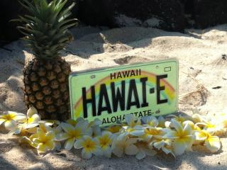 Place in Paradise, Island of Hawaii