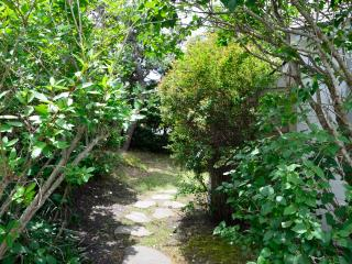 Side Path To Deck and Back Yard