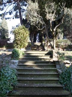 The Steps For arrive to the delicious square