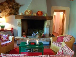 Casa al Bosco - Tuscany vacation rentals