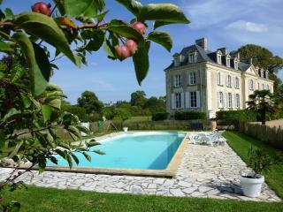 B&B Chateau La Mothaye - Loire Valley, Brion