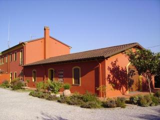 Red Country House, hills of Lucca, Montecarlo