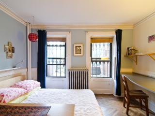 Charming Prospect/ Crown Heights Garden Apartment, Brooklyn