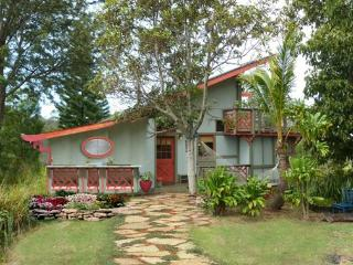 Sweet 2BR Ocean View Home Above Rainforest Canopy, Makawao