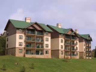 Mr D's Place at the Smokey Mtns - Image 1 - Sevierville - rentals