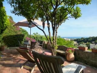 Fabulous Home With WiFi, Sea Views & Lovely Garden, Cagnes-sur-Mer
