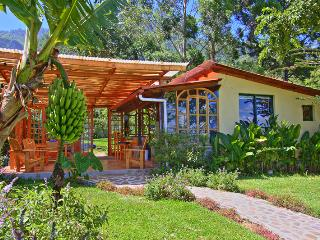 Lake Shore Retreat.  Free massage with your rental, Santa Cruz La Laguna