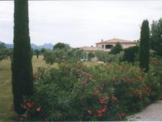 Inside property to house, pool and the Alpilles