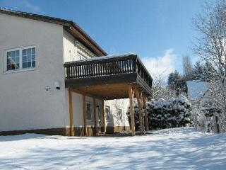 Vacation Apartment in Luckenbach - 1238 sqft, spacious, fully furnished, comfortable (# 3801), Luckenwalde