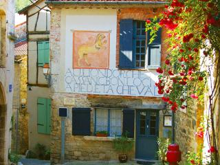 Medieval  historic 1600 old B&B, Saint-Antonin Noble Val