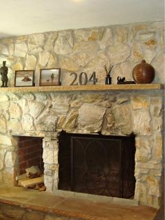 Fireplace in the downstairs living room