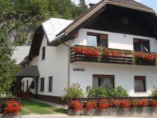 Suit Gregorc - Slovenia vacation rentals
