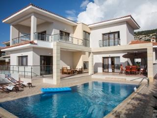 Koumasia Dream Exclusive Villa, Paphos