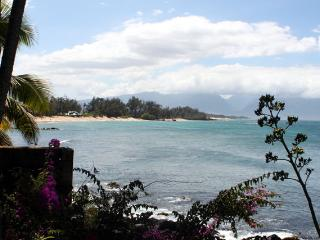Paia Bay Cottage, ocean front, License STPH2013/00
