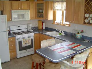 Loaded Kitchen with Top of the Line Appliances! Fridge, Freeze!er, Microwave, Oven, Stove and More!