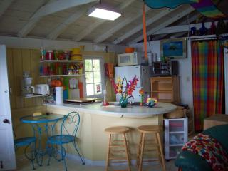 Beach Front cottage on Crystal Clear Maiden Lake - Lakewood vacation rentals