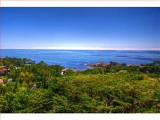 Stunning Ocean Views! Short Drive to Private Beach - Pacific Grove vacation rentals