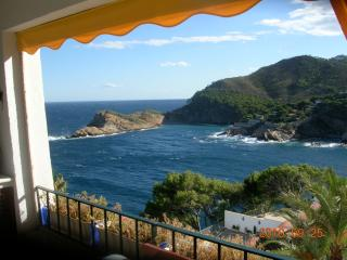 Romantic Studio in front of the sea - Begur vacation rentals
