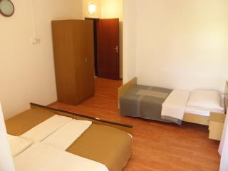 Rooms Nediljka - 24531-S16 - Rovanjska vacation rentals