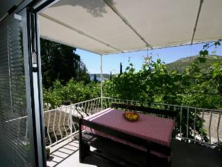 Apartment and Rooms Marija - 52681-A1 - Slano vacation rentals