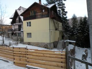 The perfect place to be one with nature  - Sinaia