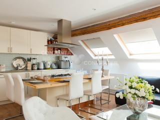 luxury 2 bedroom  apartement in the city of brussels - Brussels vacation rentals