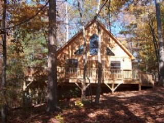 Hawks Nest - Hot Tub, 2 Queen Beds, 2 bathrooms lovely private and peaceful setting cabin, Candler