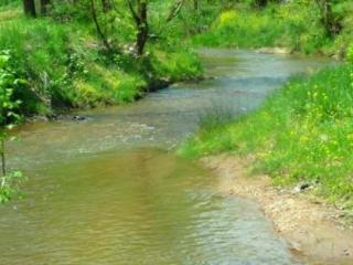 Dancing Waters – Relaxing on a Creek, Nicely Furnished Country Cottage, Game Room & Fire Pit, Candler