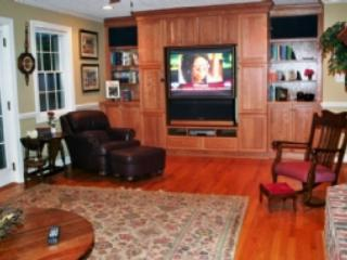 Television In The Family Room
