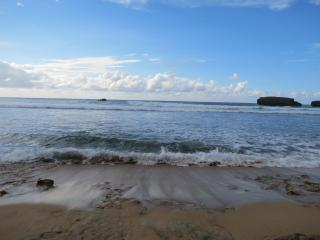 Awesome Ocean Front House!, Arecibo