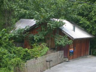 River Rapids Cabin Overlooks River, 1 BR Studio - Pigeon Forge vacation rentals