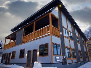 Hakuba Gondola Apartments 2 Bedroom (ski-in) - Hakuba-mura vacation rentals