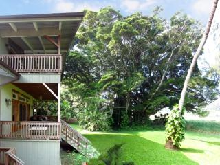 Tropical Paradise at the Oceanview Banyan House with wraparound lanais, Kapaau