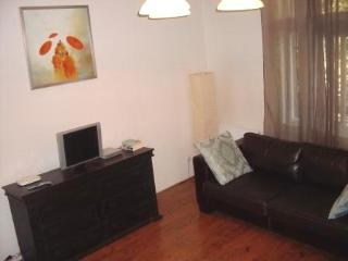 Big Dositejeva Apartment - Belgrade City Centre, Belgrado