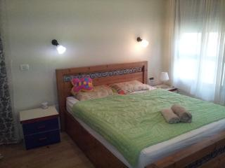 Entire home/apt in Ramot Menashe - Ramot Menashe vacation rentals