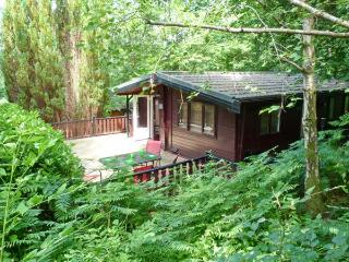 TOP LODGE, on-site facilities, pets welcome, great touring base, near Windermere, Ref. 26654
